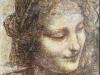 Kopia z Leonarda daVinci